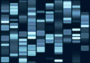 Molekulare Parasiten im menschlichen Genom