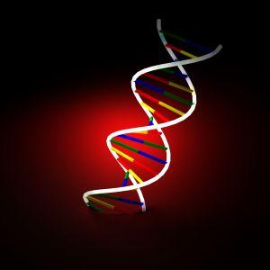 Proteinstrukturen mit informatischen Modellen
