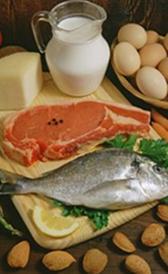 Hyperprotein-Diät