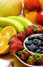Kohlenhydrate und Proteine