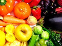 vegetarische nahrungsmittel einfache proteine